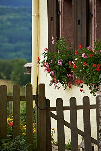 © Stephane SPACH / Offices de Tourisme du Pays Bruche Mossig Piémont